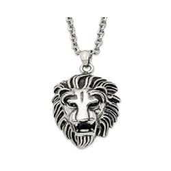 "STAINLESS STEEL ANTIQUED/POLISHED LION HEAD 24"" CH2864ST Image"
